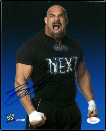 SIGNED GLOSSY WWE SUPERSTAR PHOTOS PAGE 1